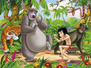 marketing libro selva